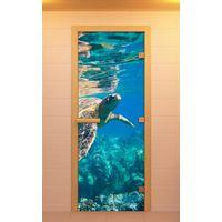 """Купить Дверь для сауны  """"ALDO"""" (ДСП) Водный мир, Поленница, Релакс, Спа,  Амбар, Дровница (стекло бронза)700×1900"""